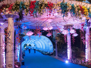 clarks : Mindz Productionz wedding organiser bangalore, chennai